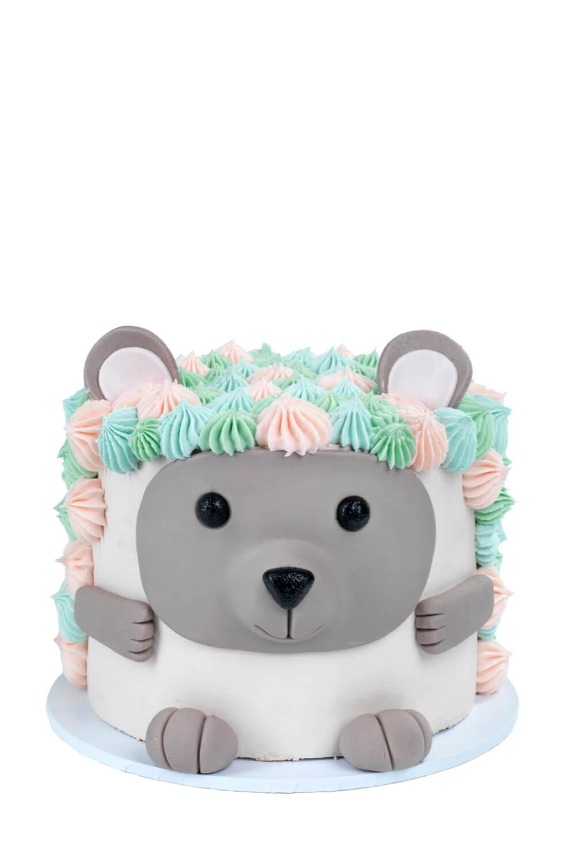 Cakes by Hancock - Hedgehog dyrehode